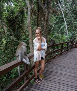 mongkey forest in ubud bali
