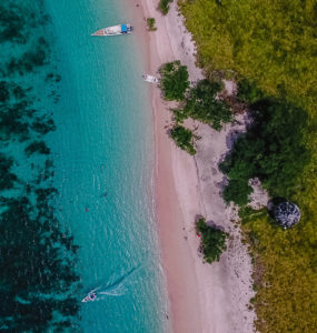 pink beach in Komodo national park